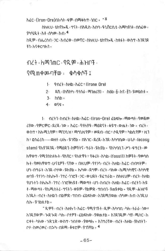 Tintawi Biret Technology beEthiopia - Seifu Belay_Page_3