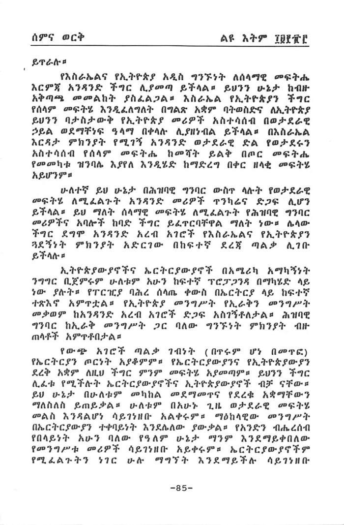 YeWiChi Mengistat - Tewodros Dagne_Page_13